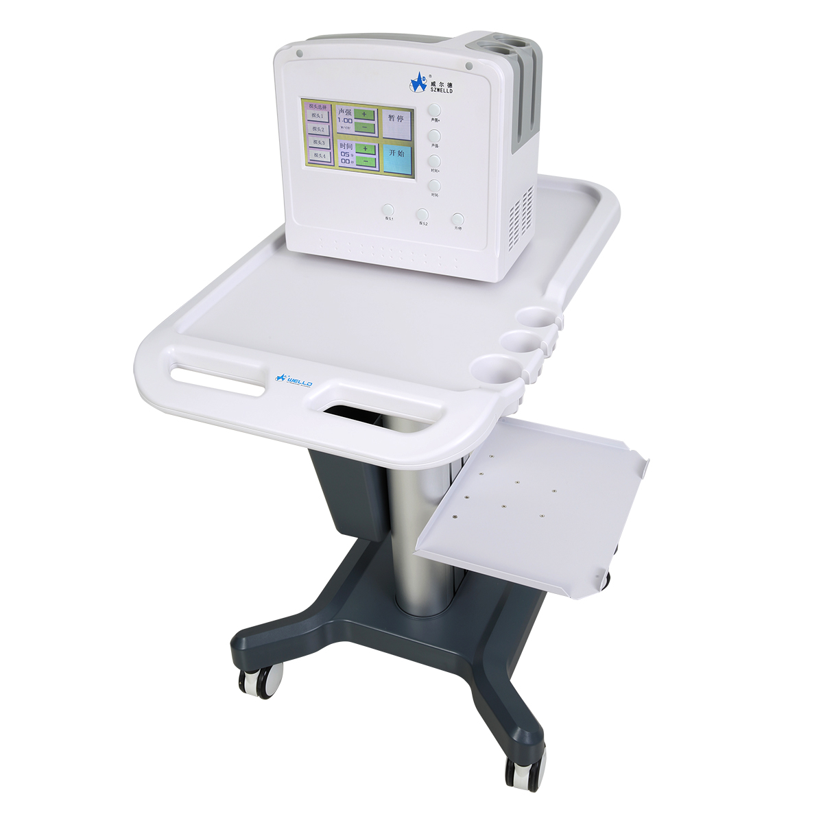 WED-300Full Digital Ultrasonic Therapy Machine